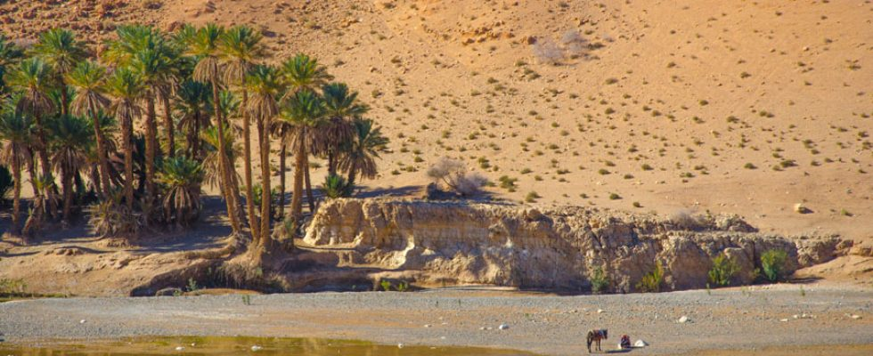 3 января. Пещера Кеф Азиза. Начало пути к «Великому Ничто».