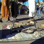 Рынок, торговля и цены в Марокко.