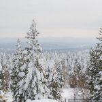 Гора Бахмур 2 марта