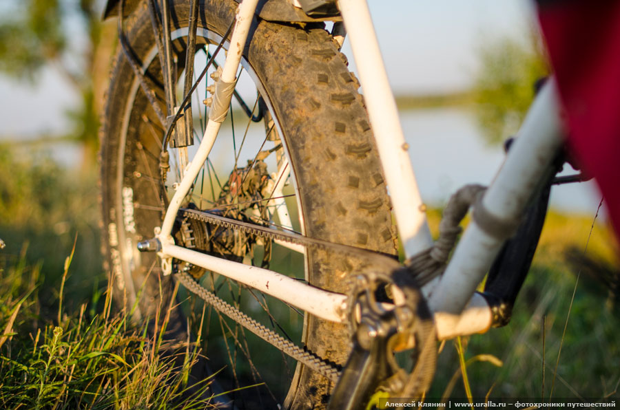 Fat bike carbon belt drive